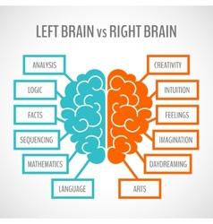 Brain hemispheres infographics vector image vector image