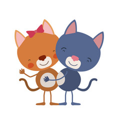 Colorful caricature with couple of cats embraced vector