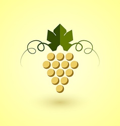 Yellow grape vector