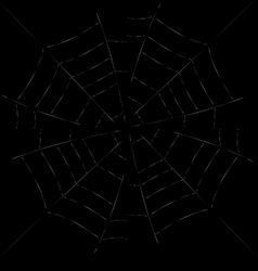 Spider web detailed - white vector