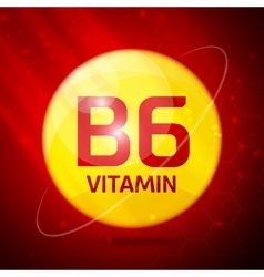 Vitamin b6 icon vector