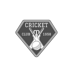 Cricket club emblem and design elements team vector