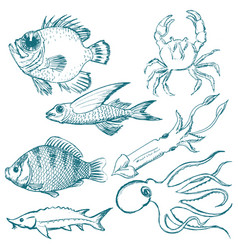 Set of underwater life vector