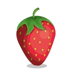 Delicious fruit strawberry isolated icon vector