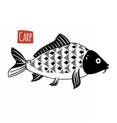 Carp black and white vector image