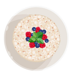 Closeup of oatmeal with fruits isolated vector