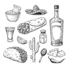 mexican cuisines drawing traditional food and vector image