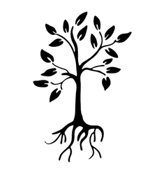 Hiqh quality tree silhouette with leaves and roots vector