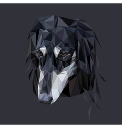 Saluki polygonal portrait vector