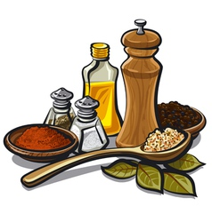 Spices and oil vector