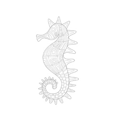 Seahorse Sea Underwater Nature Adult Black And vector image vector image