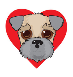 Wheaten terrier face vector