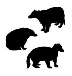 Badger set vector