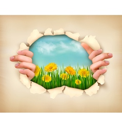 Retro nature background with grass and flowers and vector