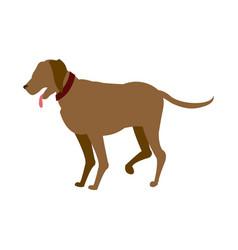 Carton dog walking pet animal vector