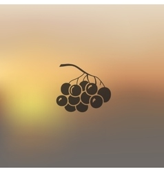 Berries icon on blurred background vector