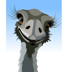 Cartoon smiling ostrich with long eyelashes vector