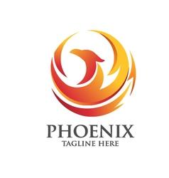 Elegant phoenix logo concept vector