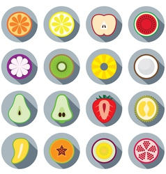 Piece of fruits icon vector