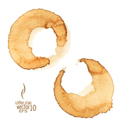 2 coffee stain watercolor 03 vector