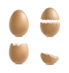 realistic 3d detailed various closeup shell eggs vector image vector image