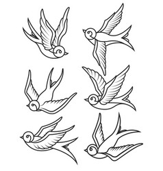 set of swallow tattoo templates isolated on white vector image vector image