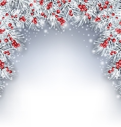Holiday background with silver fir twigs and holly vector