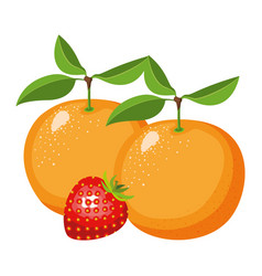 white background with realistic set of fruits vector image