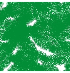 Evergreen vector