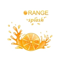 Slice of orange with splashing vector
