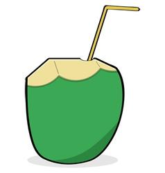 Coconut water vector image