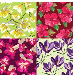 Floral set seamless patterns hand-drawing vector