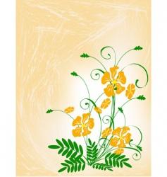 bouquet of orange flowers vector image vector image