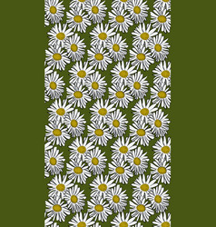 seamless pattern with chamomile vector image vector image