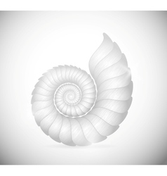 The seashell vector