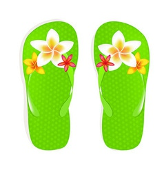 Flip flops with flowers vector
