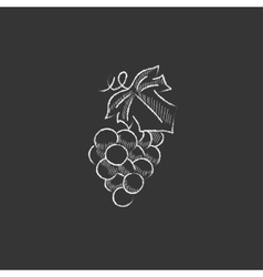 Bunch of grapes drawn in chalk icon vector