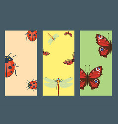 colorful insects icards wildlife wing detail vector image vector image