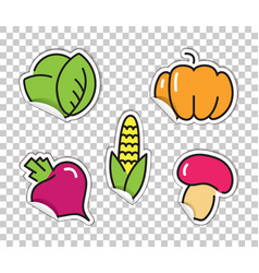 Stickers with images of vegetables cabbage vector