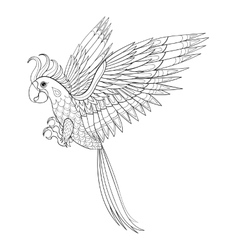 Hand drawn tribal parrot bird totem for adult vector