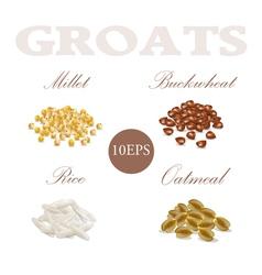 Set groats millet buckwheat rice oatmeal vector