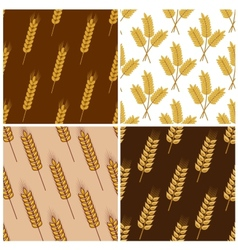 Seamless patterns of wheat and cereal ears vector
