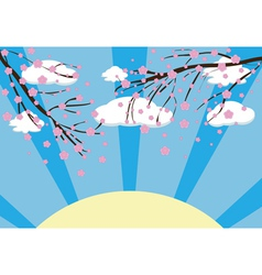 Cherry blossom3 vector image vector image