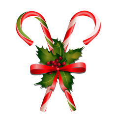 Christmas candies with holly decorations vector