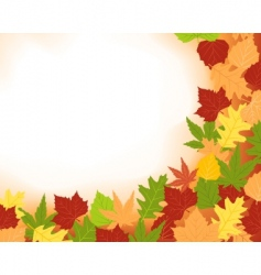 colorfull frame of fall leaves vector image