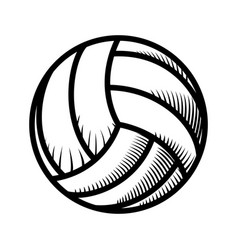 Voleyball ball isolated vector