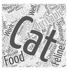 Feline irritable bowel syndrome word cloud concept vector