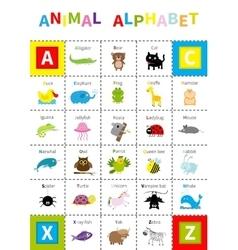 Animal zoo alphabet poster Cute cartoon character vector image