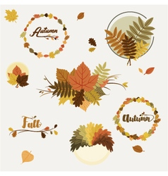 Autumn decorations vector image