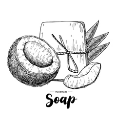 Handmade natural soap hand drawn organic vector